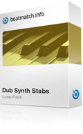 dub synth stabs loop pack vol.1